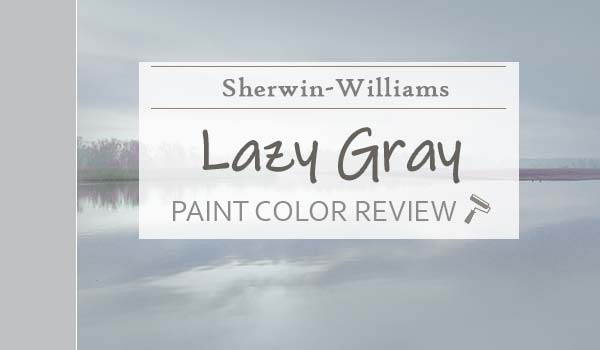 sw lazy gray color review