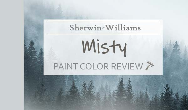 sw misty featured image