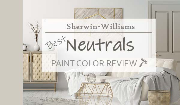 sw neutrals featured image
