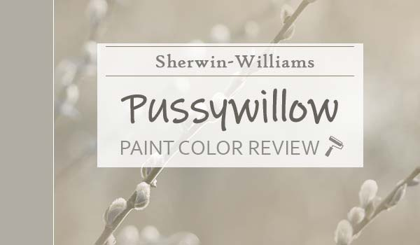 sw pussywillow review