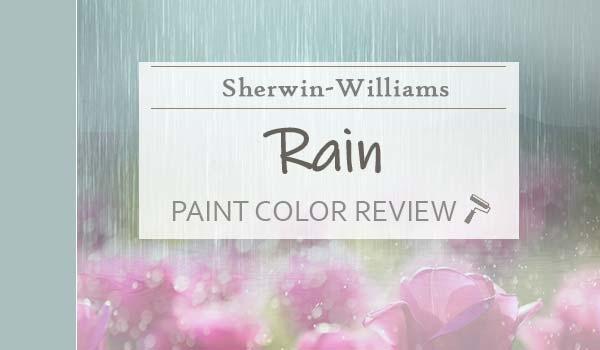 sw rain paint color review