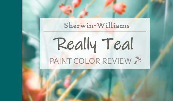 sw really teal paint color review