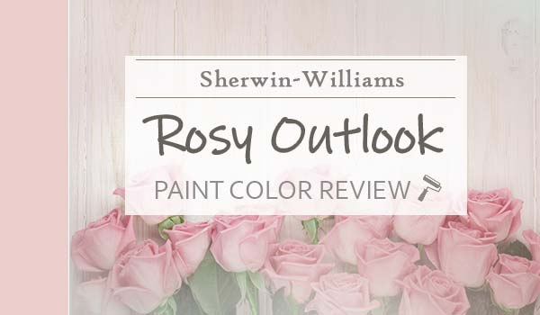 sw rosy outlook review