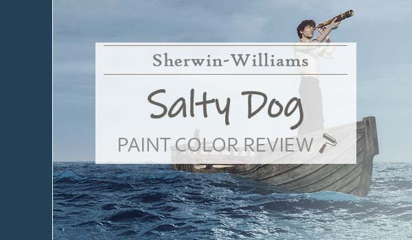 sw salty dog paint color review