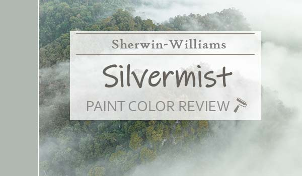 sw silver mist featured image