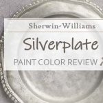 sw silverplate featured image