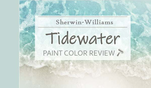 sw tidewater review