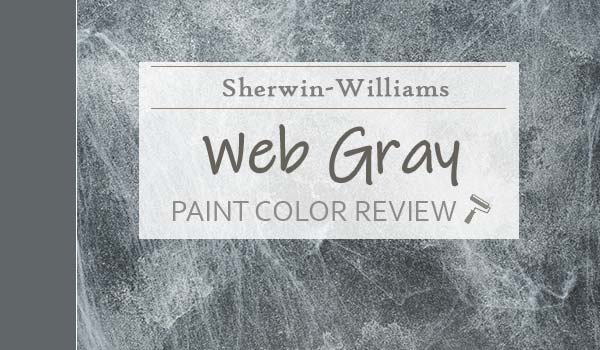 sw web gray featured image