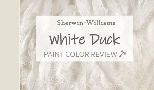 sw white duck paint color review