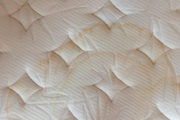 urine stains on mattress