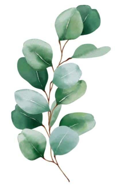 vert leafy brown stem