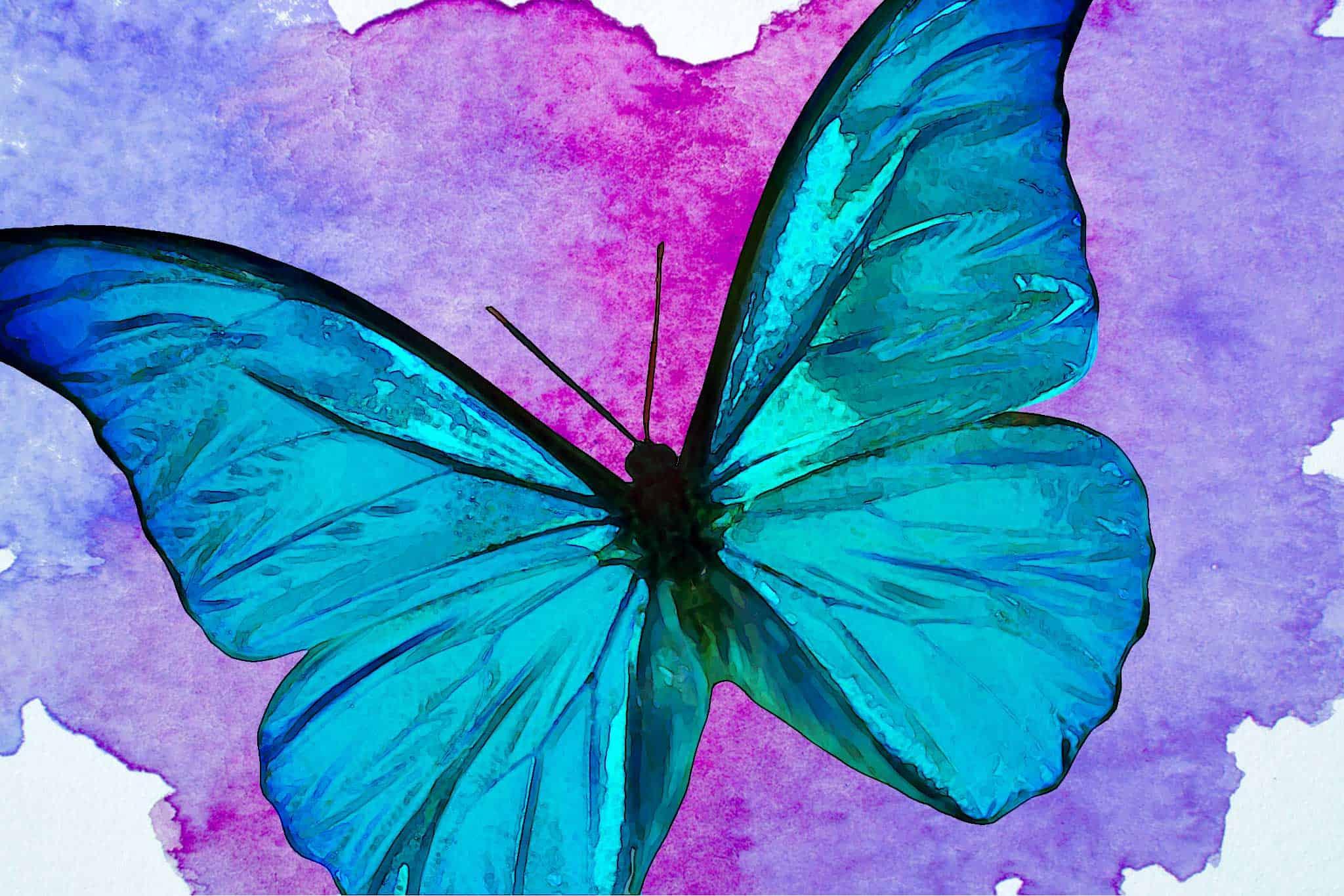 watercolor butterfly big blue purple bkg