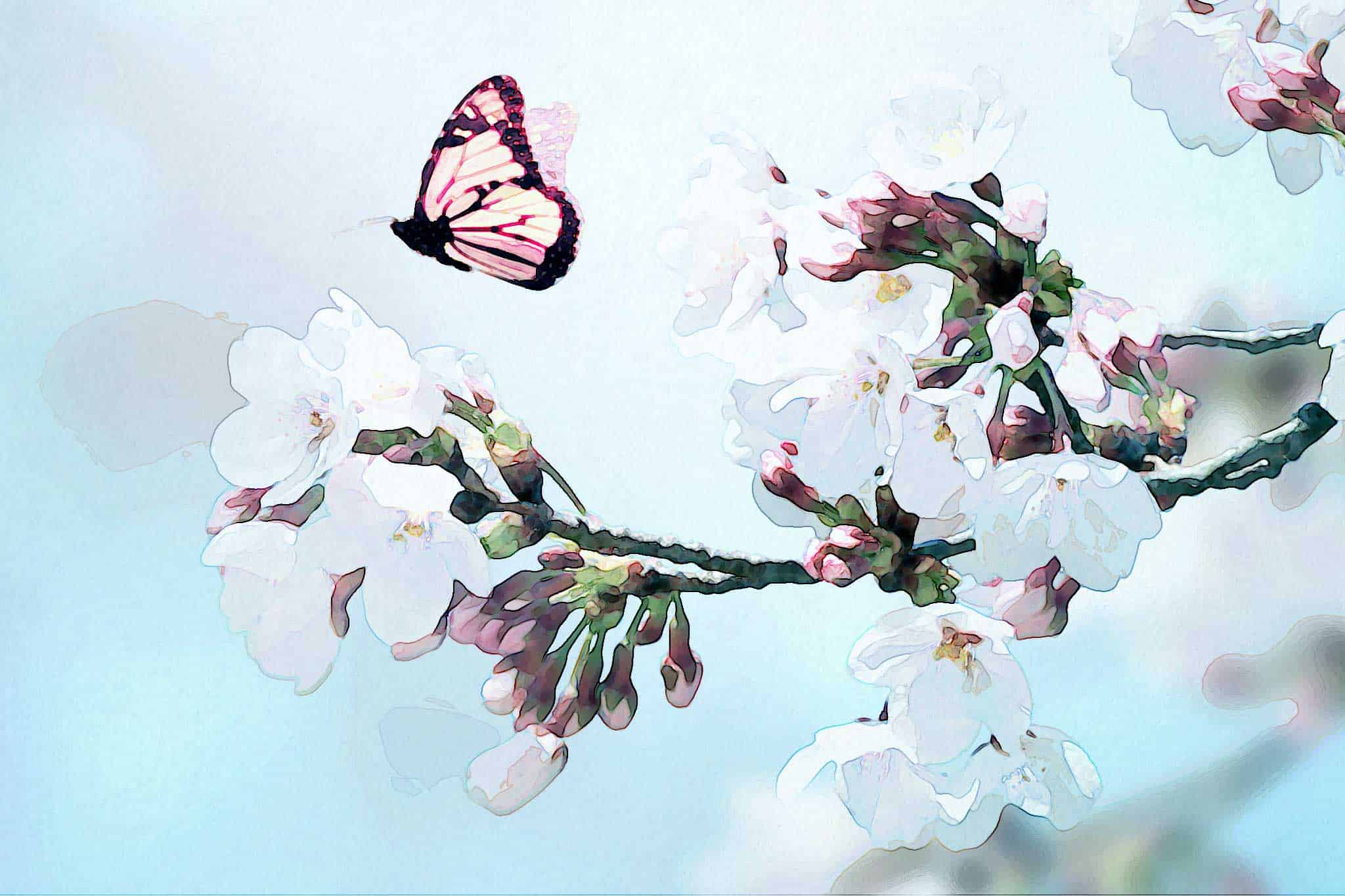 watercolor butterfly flying blossoms