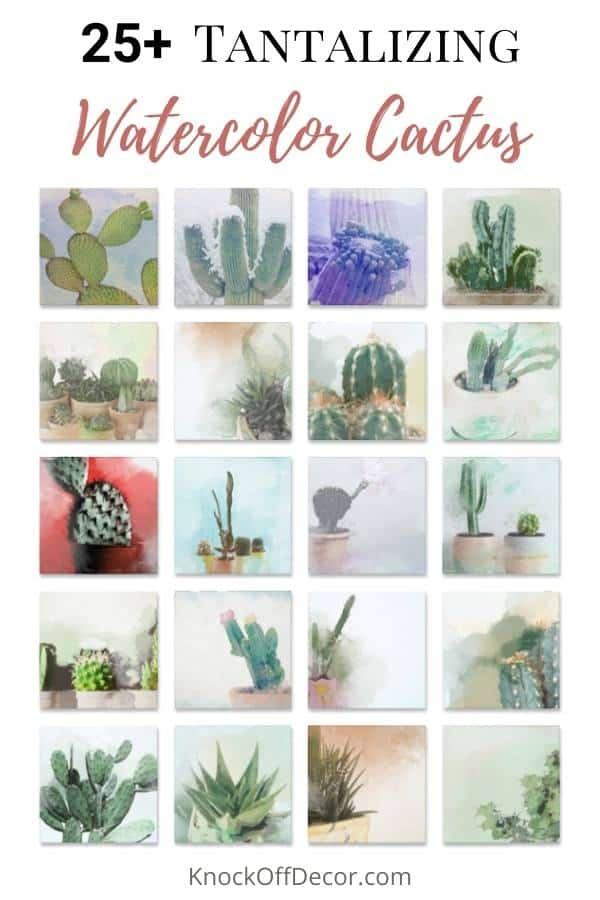watercolor cactus hdr