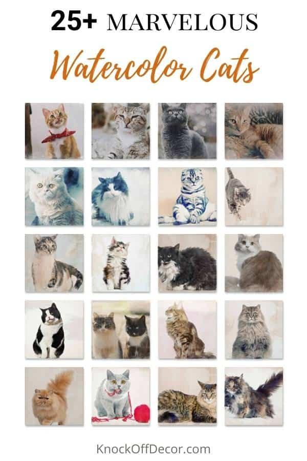 watercolor cat hdr