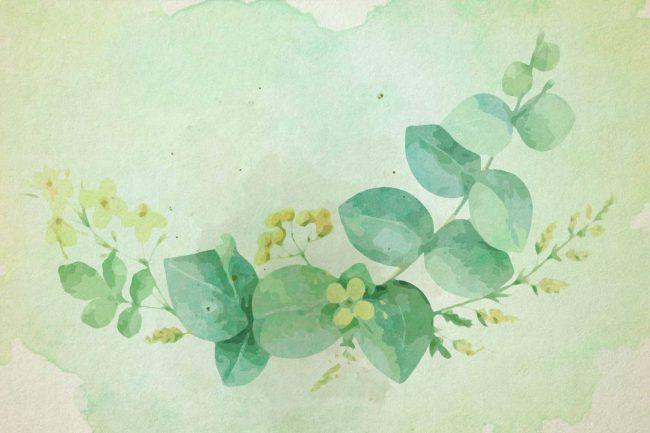 watercolor eucalyptus 1 green