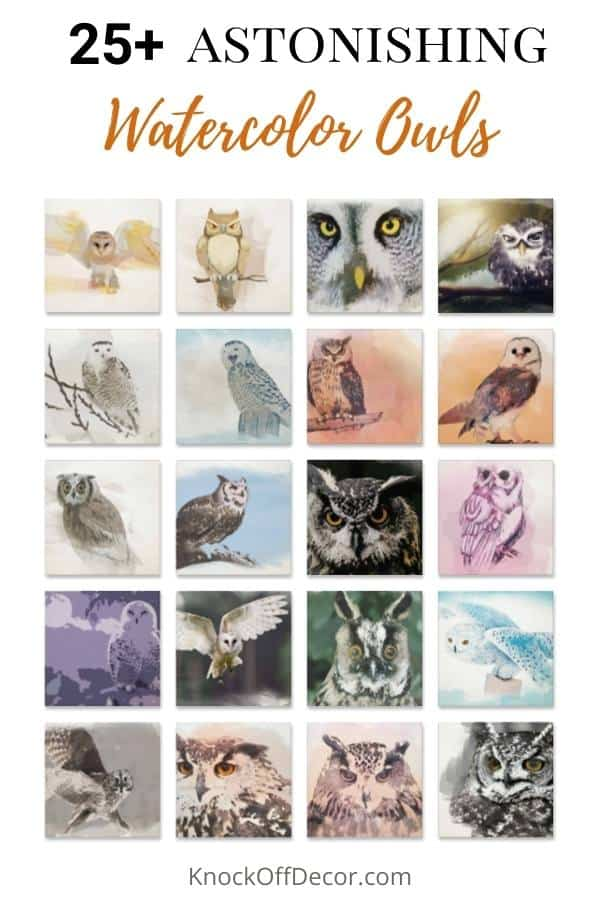 watercolor owls hdr