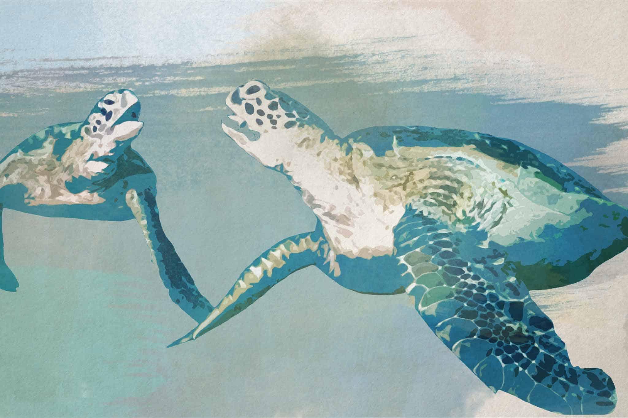 watercolor turtle green twin