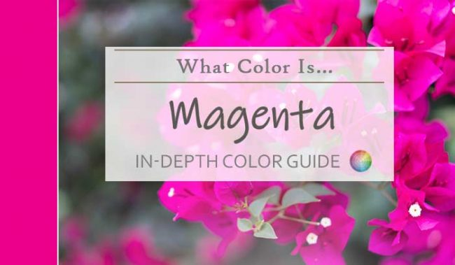 what color is magenta featured image