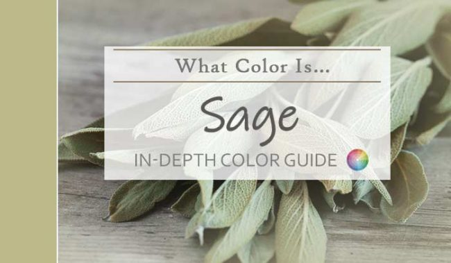 what color is sage hdr