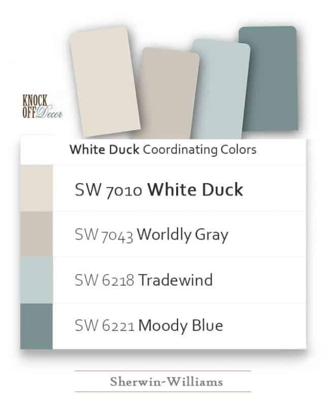 white duck coordination